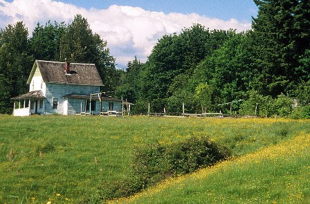 Looking across the buttercup meadow to the Jackson Farm House, taken by photographer Bill Amos in 1995.