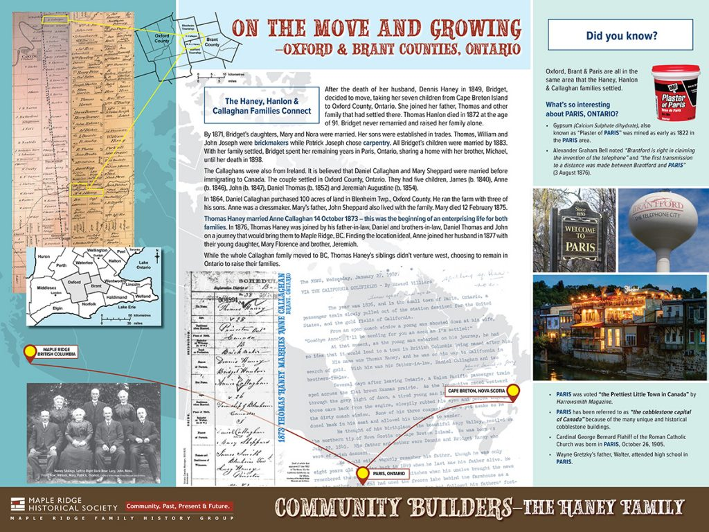 Community Builders: The Haney Family board 2