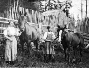Milka and Edith (r) Jackson posed with two horses on their family property in Albion on 102nd Ave in about 1910.